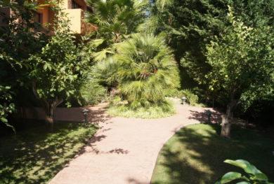 ploshhadyu-komplekse-jardines_img_ 2