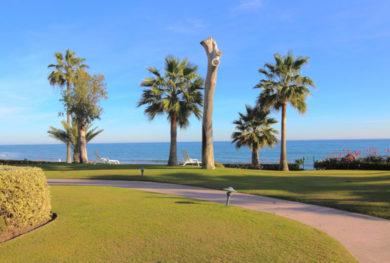 3-h-komnatnaja-kvartira-v-zhilom-komplekse-alcazaba-beach-na-pervoj-linii-morja_img_ 15