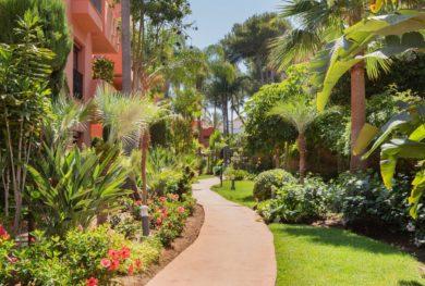 penthaus-v-komplekse-jardines-de-don-carlos-na-vtoroj-linii-pljazha-marbelja-elvirija_img_ 14