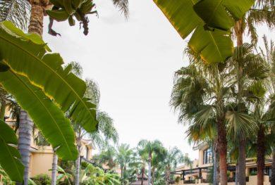 puerto-banus-kvartira-s-sobstvennym-sadom-v-zakrytom-zhk-la-bahia-de-banus_img_ 16