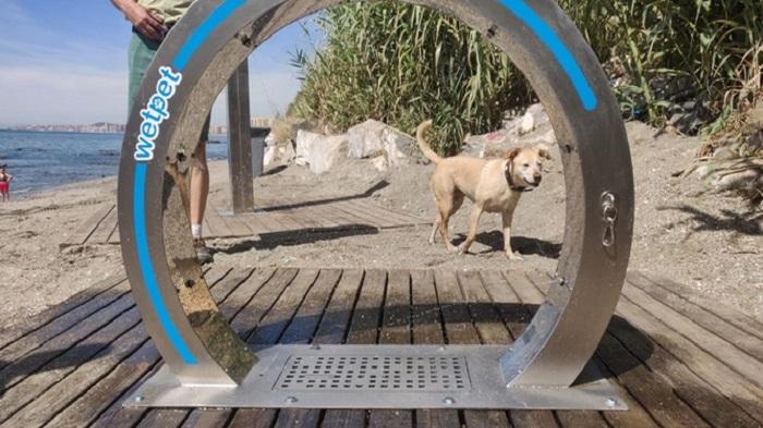 Пляжи для собак в Марбелье
