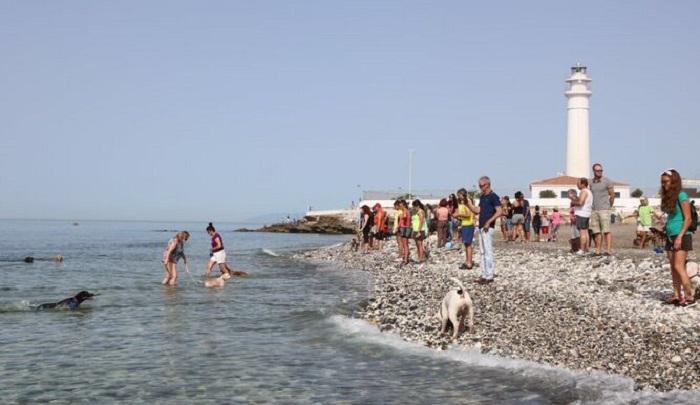 Пляж для собак на Коста дель Соль