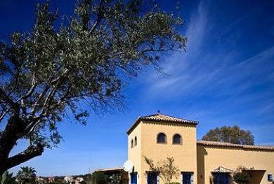 villa-v-andaluzskom-stile-cortijo-v-estepone-v-pjati-minutah-ezdy-ot-morja_img_ 2